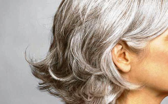 Makanan-makanan untuk mencegah rambut beruban