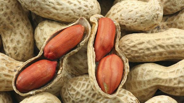 Tanda-tanda alergi Kacang Tanah